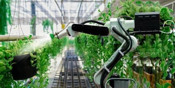 شکل گیری همکاری های بین المللی در راستای توسعه فناوری های حوزه باغبانی