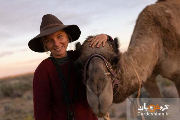 سفر یک زن با چند شتر در صحرای استرالیا