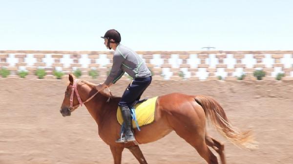 برگزاری مسابقات پرش با اسب جام فدراسیون جهانی در ایران